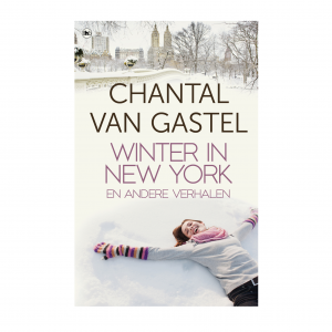 Winter in New York Chantal van Gastel